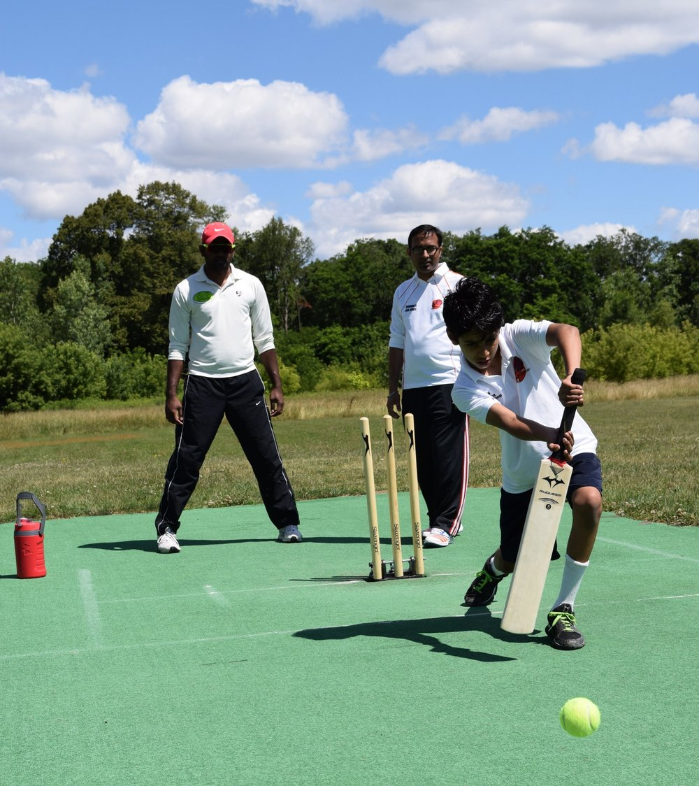 Courtesy of Vra Photography and the West Michigan Cricket Club