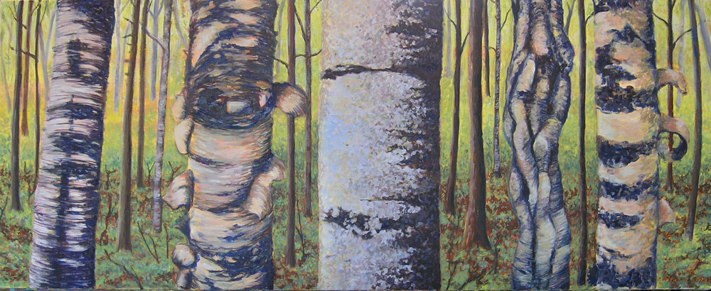 birches crop.jpg