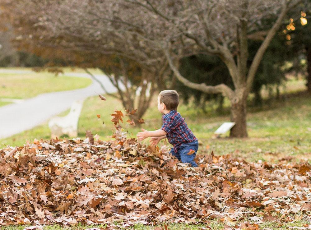 Allentown-rose-garden-lytle-photo-co-family-session (46).jpg