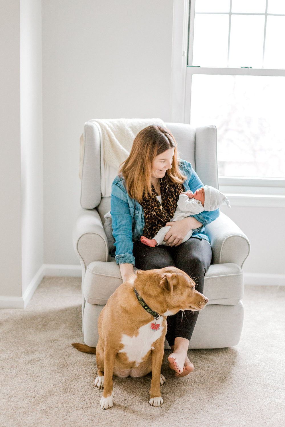 Blue Bell Pennsylvania In home newborn session with dog white and gray animal nursery wedding and lifestyle photographer Lytle Photo Co (7 of 109).jpg
