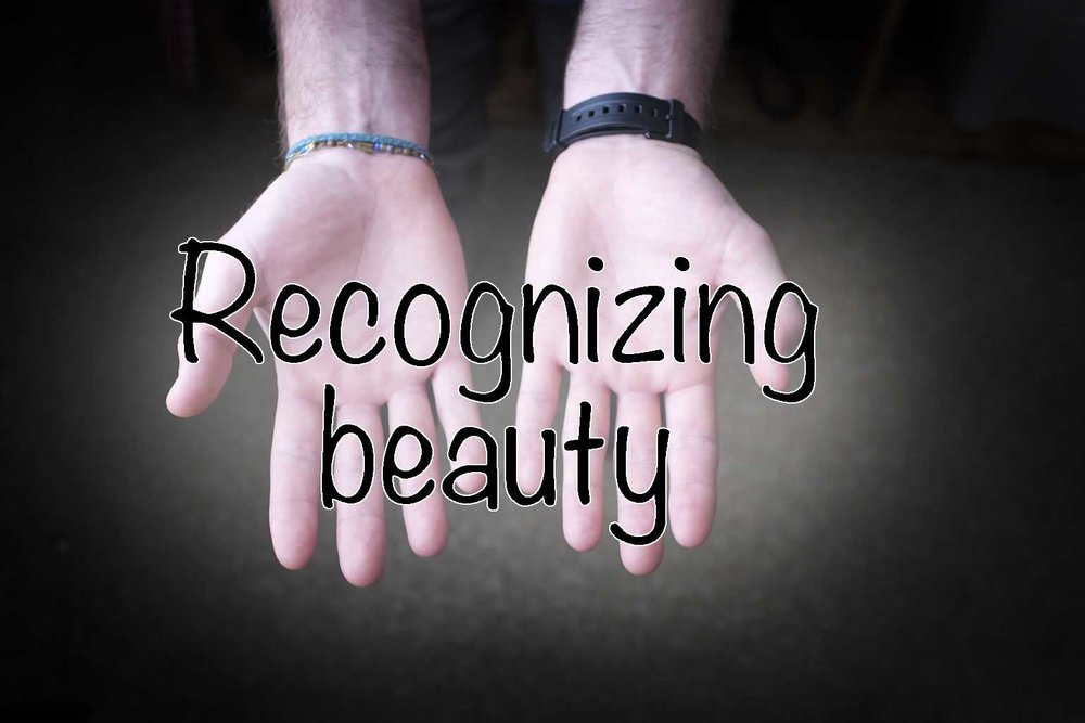 category 6- recognizing beauty.jpg