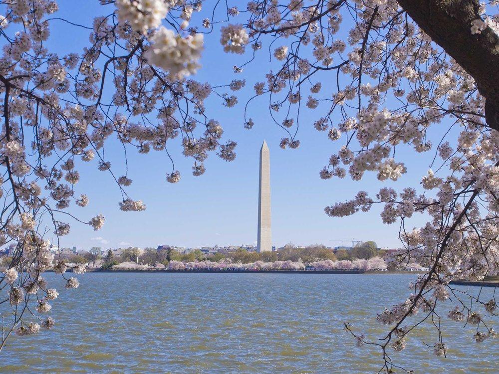 WashingtonDC01.jpg