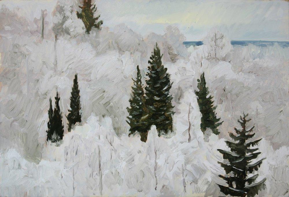 Kaukajärvi, Hikivuori, 2018 (11.1.2018).jpg
