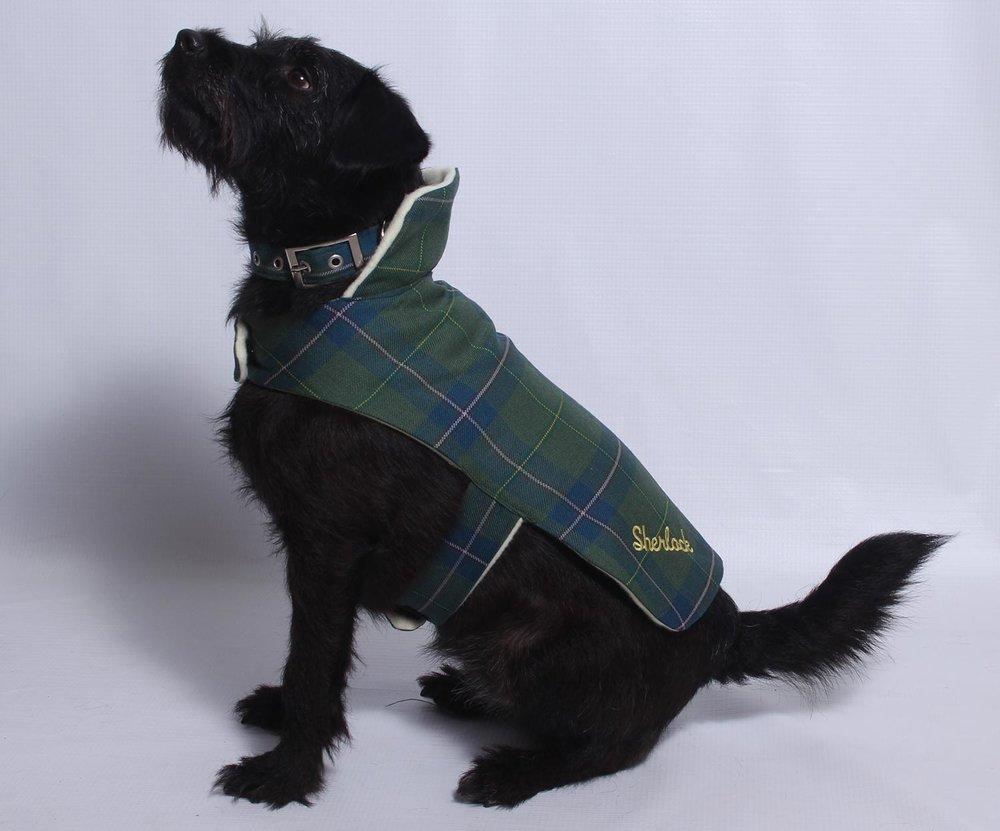 dog_coat.jpg