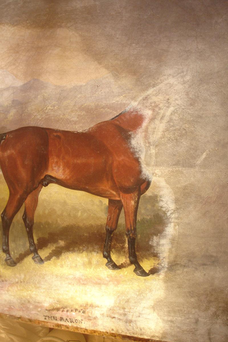 racehorse-mid-2.JPG