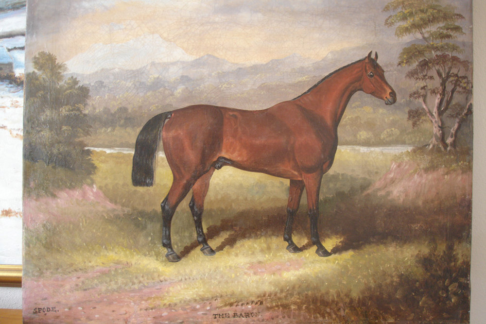 racehorse-complete.JPG
