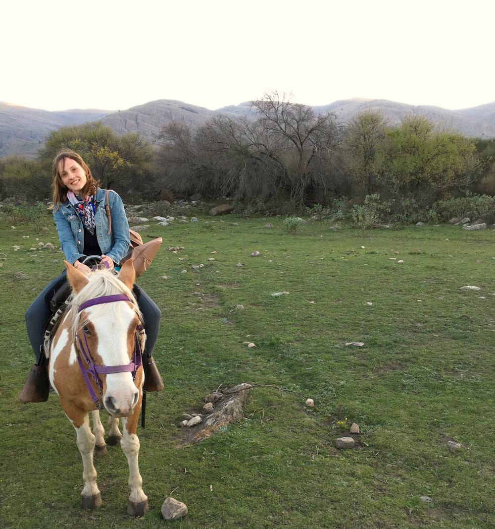 caballo sierra de la ventana.jpg