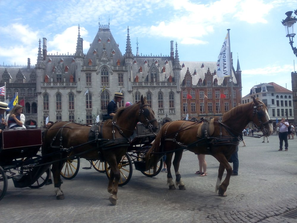 brugges chevaux caballos brujas verano.jpg