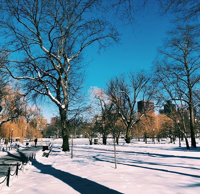 who would've thought that 21° would feel balmy? at least you're pretty, #boston