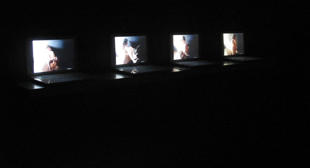 Julia-venus installation.jpg