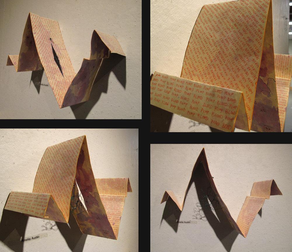 Amelia-Circulation book.jpg