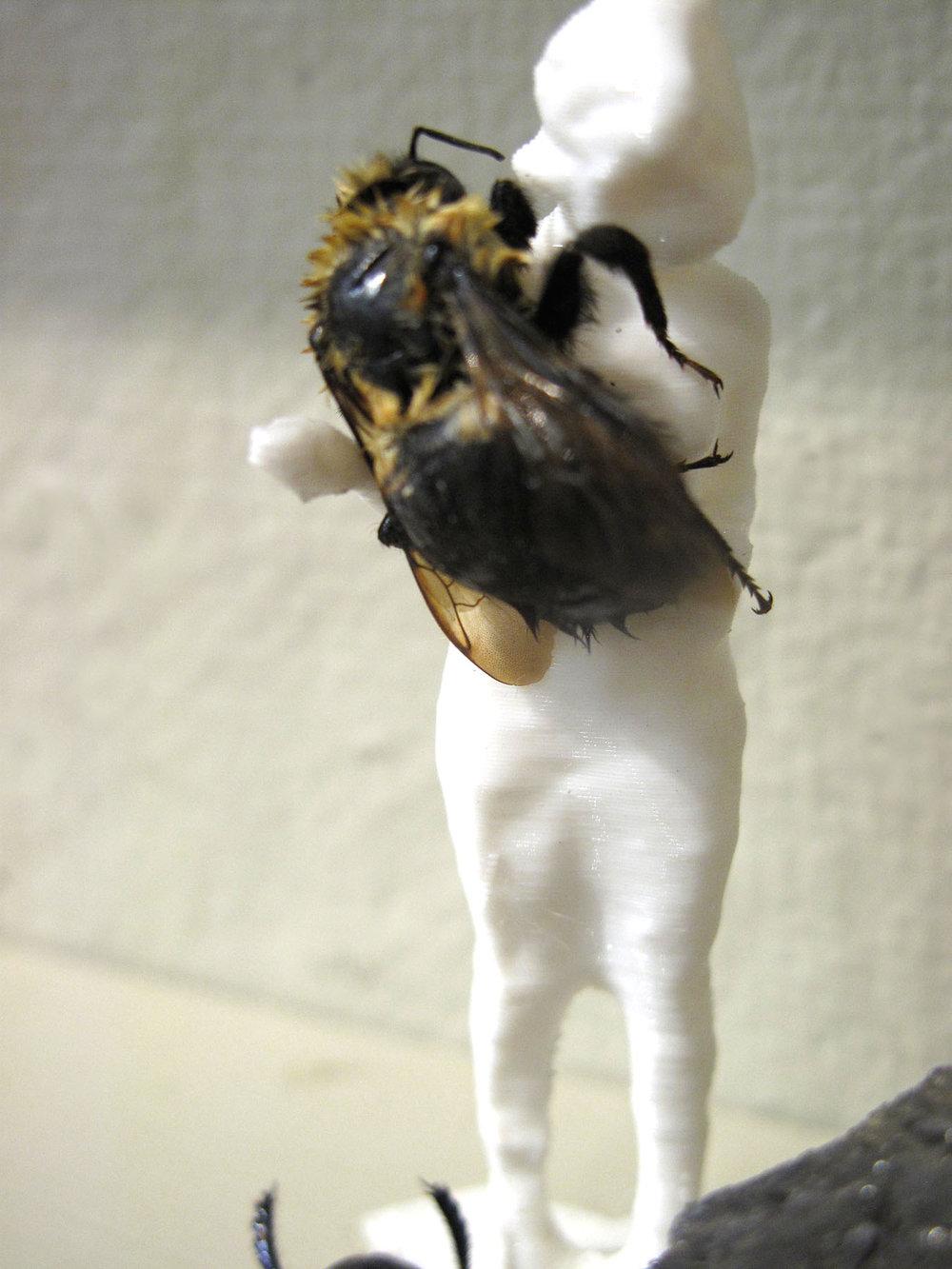Kaitlyn - BeeWoman.jpg