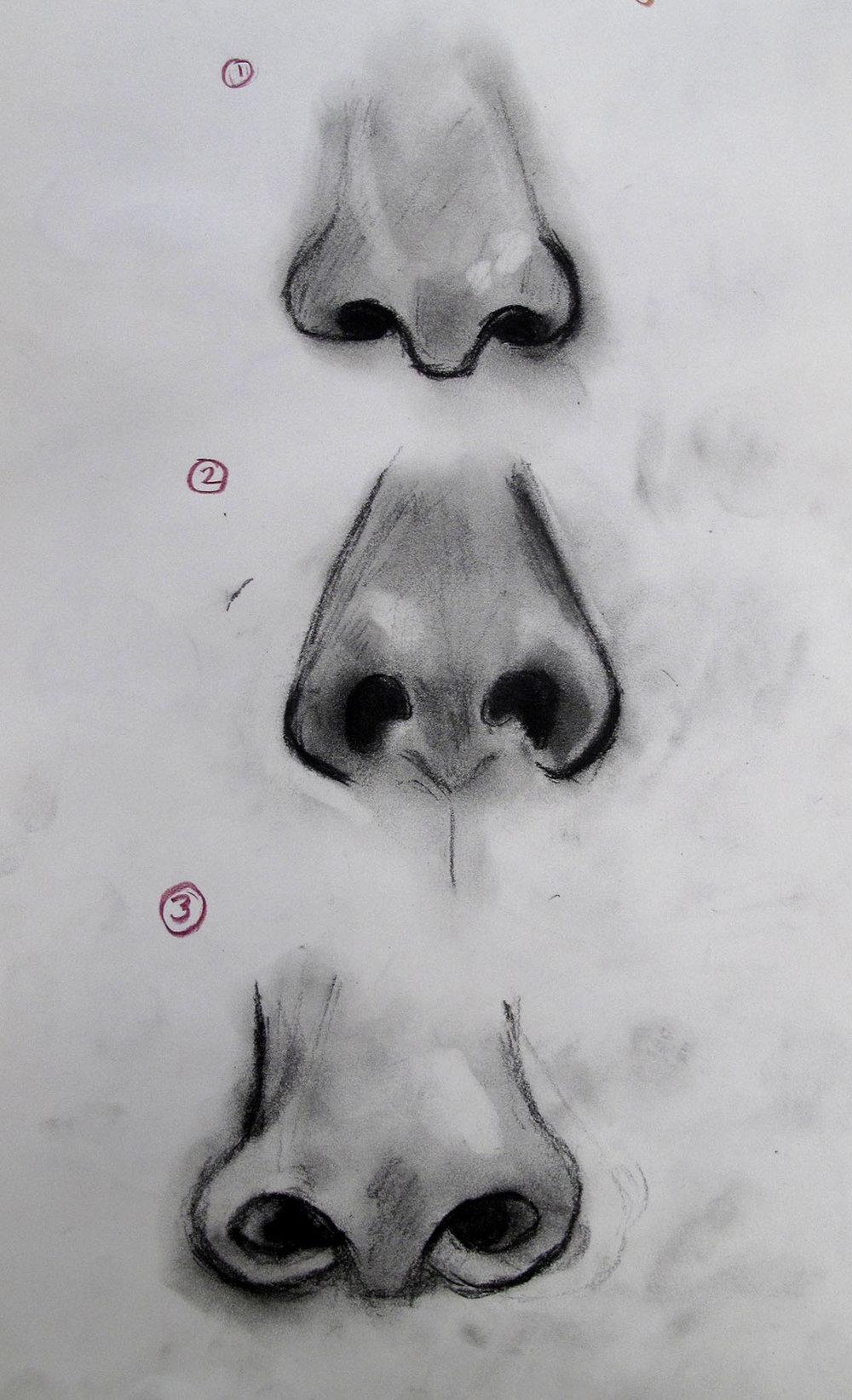 Alyssa K-noses.jpg