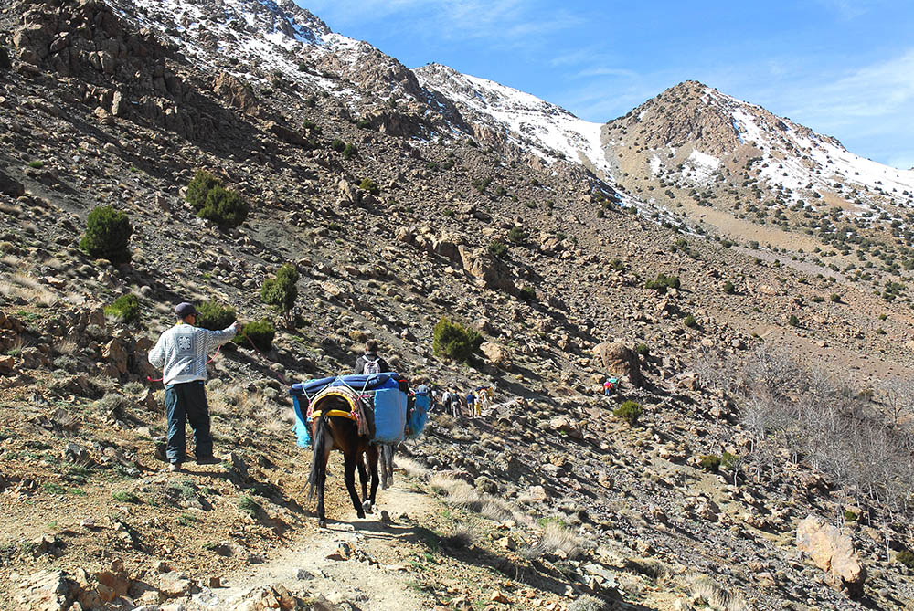 Trekking2r.jpg