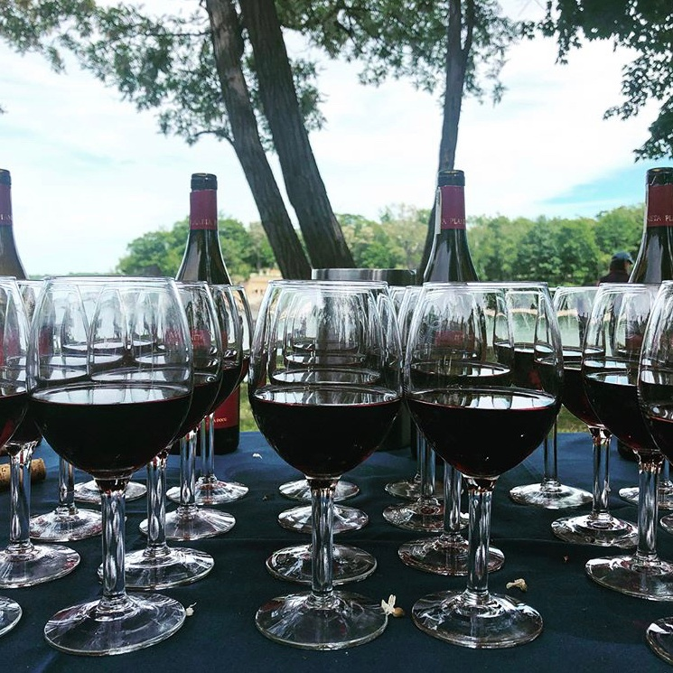 wine-wise-events-portland-wine-week-maine-land-sea-harbor-hotel-diamonds-edgeIMG_5655.jpg
