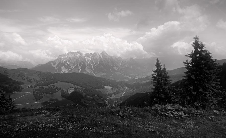 websitelandscape-3.jpg