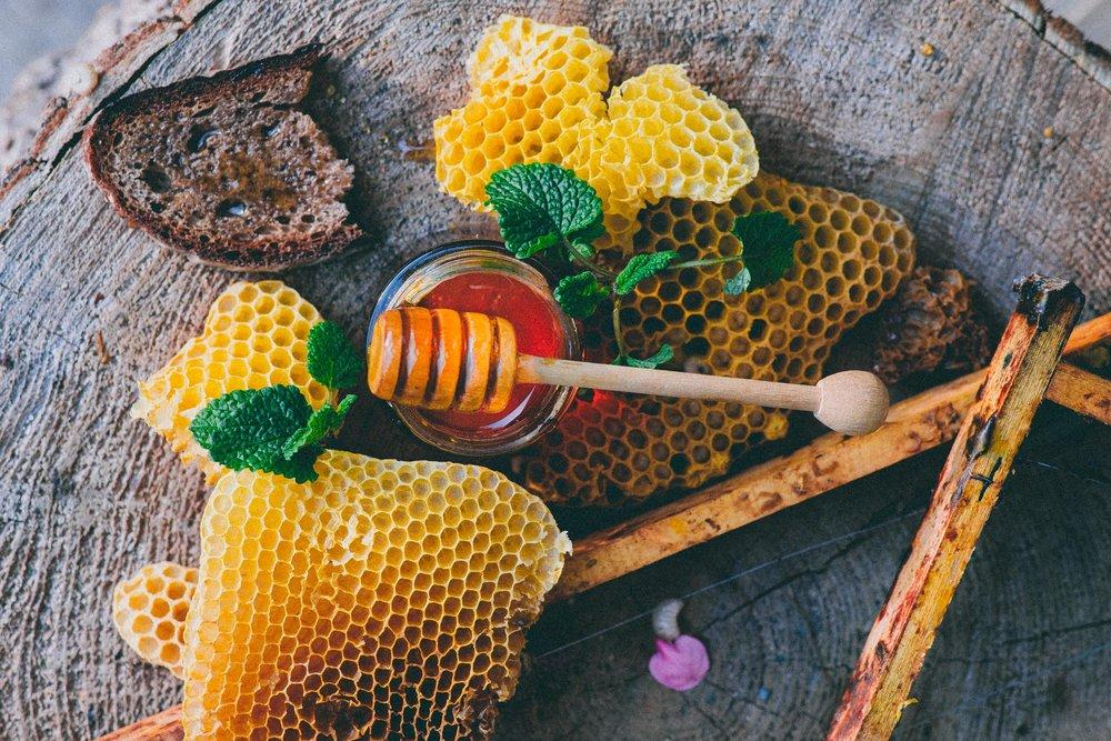Karoline Greimel's Honey-66.jpg