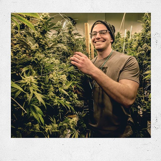 "Fresh Baked Shout Out to Garren! ⠀ ⠀ Garren's favorite strains include Golden Goat, Super Blue Thai and Super Lemon Haze! ⠀ ⠀ ""The cannabis industry is an paradise everyday. Surrounded by great friends & quality flower...life couldn't be better"" ⠀ ⠀ Garren enjoys immersing himself in the digital marketing and education side of cannabis. Fascinated with the rapidly changing industry hes looking forward to the future. ⠀ ⠀ //21+ for viewing only! Nothing for Sale!//⠀ •⠀ •⠀ •⠀ •⠀ •⠀ #420life #cannabis #weed #weedstagram #cannabislife #highsociety #maryjane #stoner #710 #kush #highlife #cannabiscommunity #dank #thc #hightimes #high #denverlife #smoke #pot #stoned #dabs #stonernation #cannabisculture #mmj #shatter #fueledbythc #topshelflife  #instaweed #Boulder #Colorado"