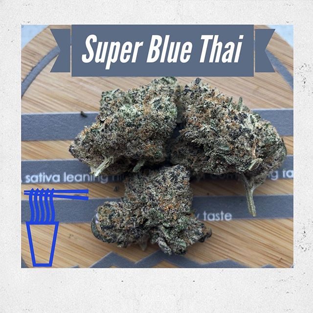 If your looking for a that perfect strain to binge watch Game of Thrones... we've got you covered. Super Blue Thai provides a perfect balance of relaxation while leaving you with uplifting social vibe. Your going to want to try this strain before the Ice King freezes over Colorado.⠀ //21+ for viewing only! Nothing for Sale!//⠀ •⠀ •⠀ •⠀ •⠀ •⠀ #420life #cannabis #weed #weedstagram #cannabislife #highsociety #maryjane #stoner #710 #kush #highlife #cannabiscommunity #dank #thc #hightimes #high #denverlife #smoke #pot #stoned #dabs #stonernation #cannabisculture #mmj #shatter #fueledbythc #topshelflife  #instaweed #Boulder #Colorado