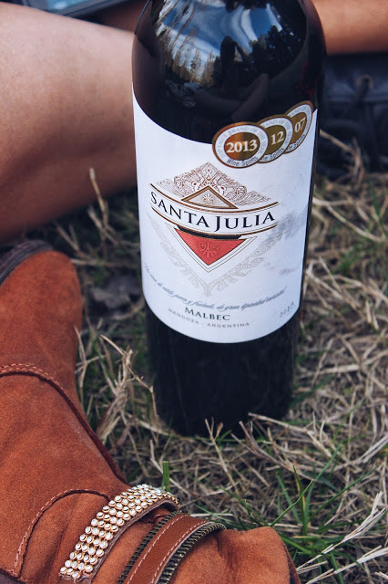 lifesthayle-wine-time-santa-julia-malbec.JPG