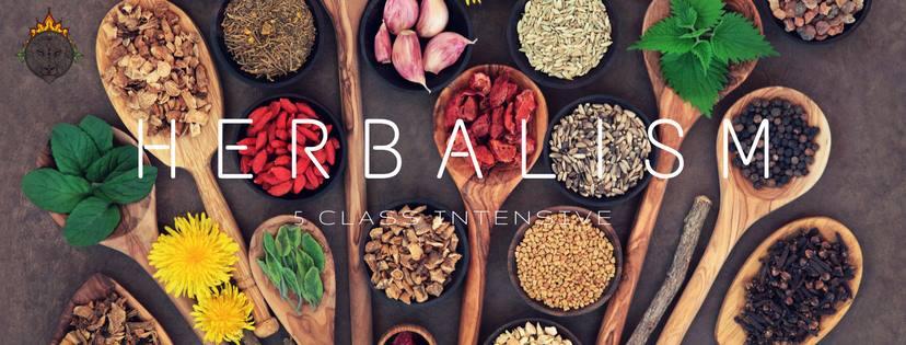 herbalismclass.jpg