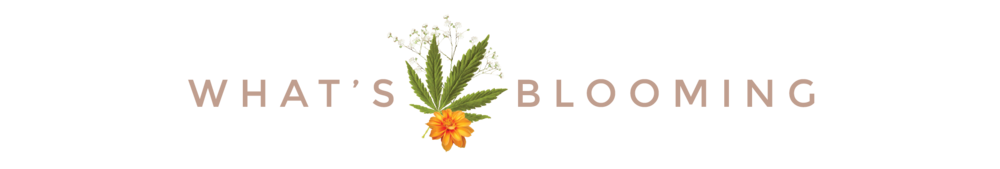 Svn Space What's Blooming-01-01.png
