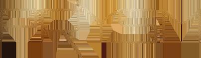 prysm_logo.png