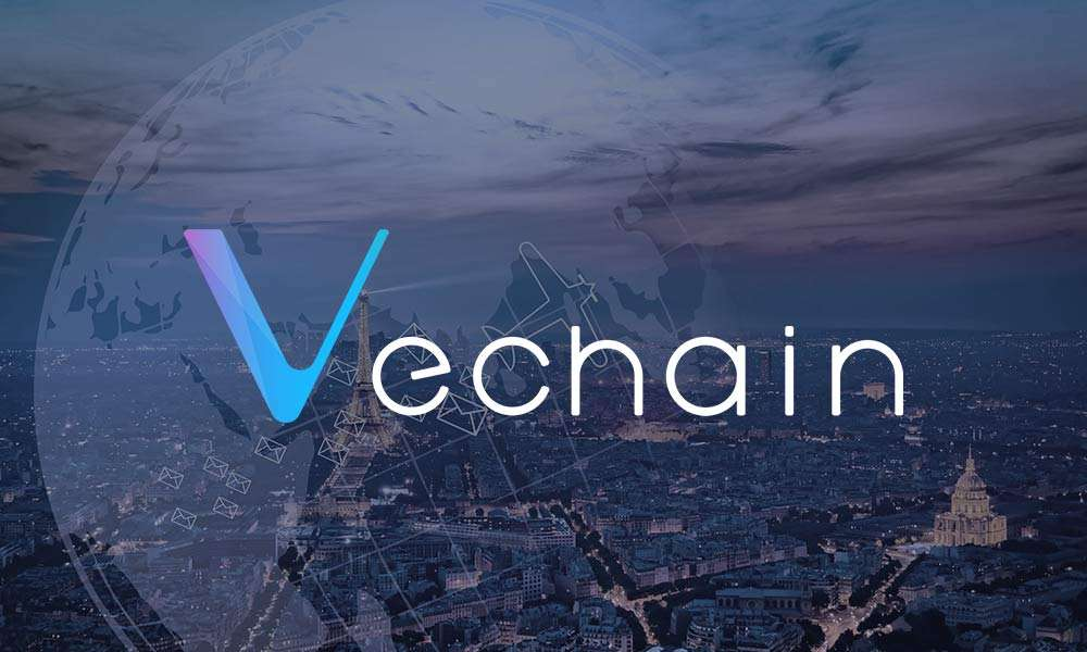 101 Series - Vechain
