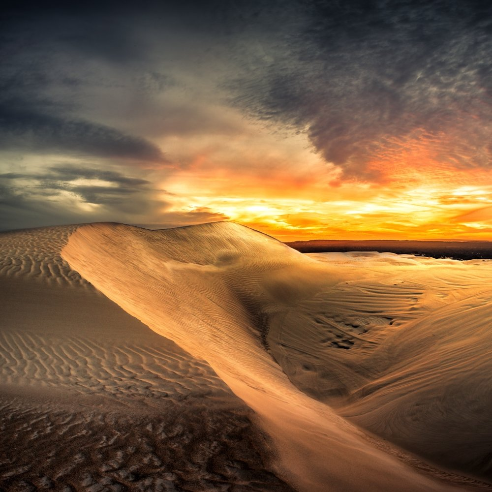 - Image by David Dahlenburg - Dune Glow