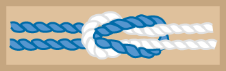 Silver-Beaver-Knot.png