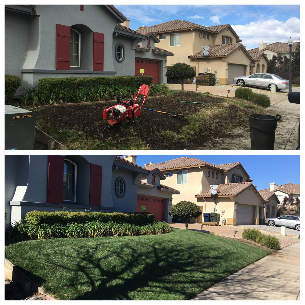 We offer landscaping services such as installation of sod, rock and mulch. All services come with a free quote so don't wait, call today!