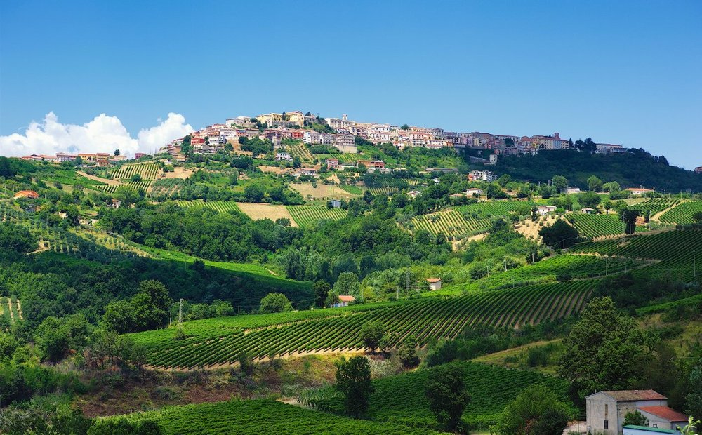The European wine industry produces almost 20 billion euros of value annually. Now climate change is threatening the crops. ©Mastroberardino