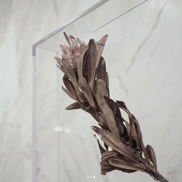 por FLO Atelier Botânico -