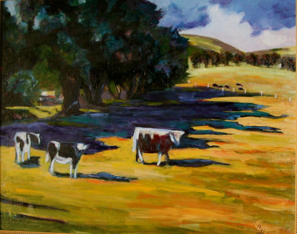 California Cows.jpg