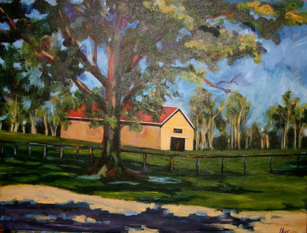 Early Morning Shade -Yellow Barn in Kentucky.jpg