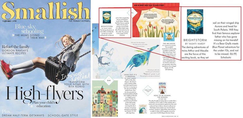 Brightstorm in Smallish Magazine