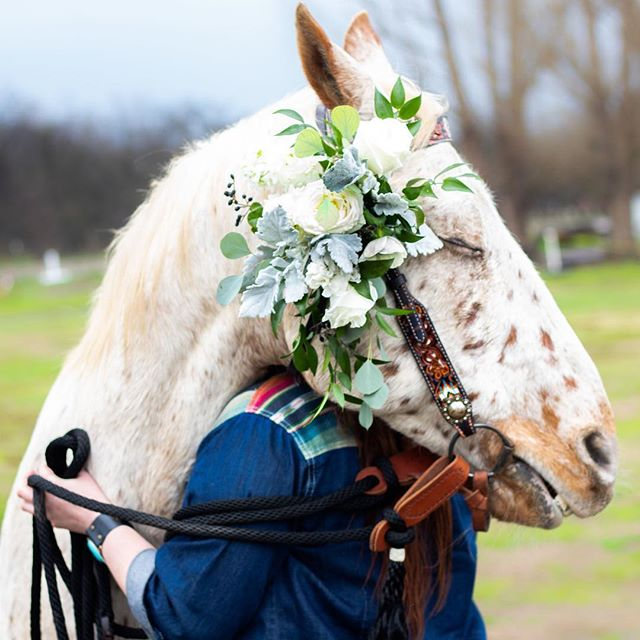 So excited to be able to make a little something for a sweet horse. Yes, this is for you @misstko123.😊 Model: @moochie44  Hair and makeup: @makeupbymanda  Photography: @ms_photography76  #fresnoflorist #cowgirlweddings #countrystylewedding  #horsefloral #botaniquefloralartistry