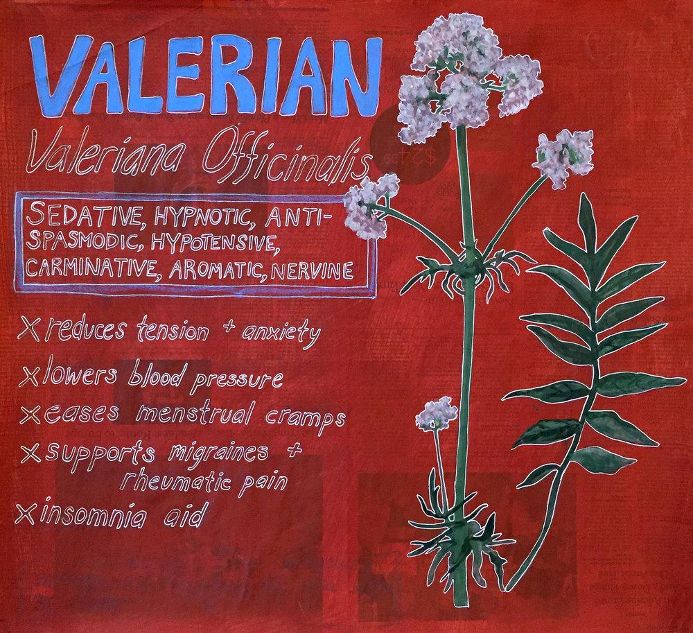 Valerian.jpg