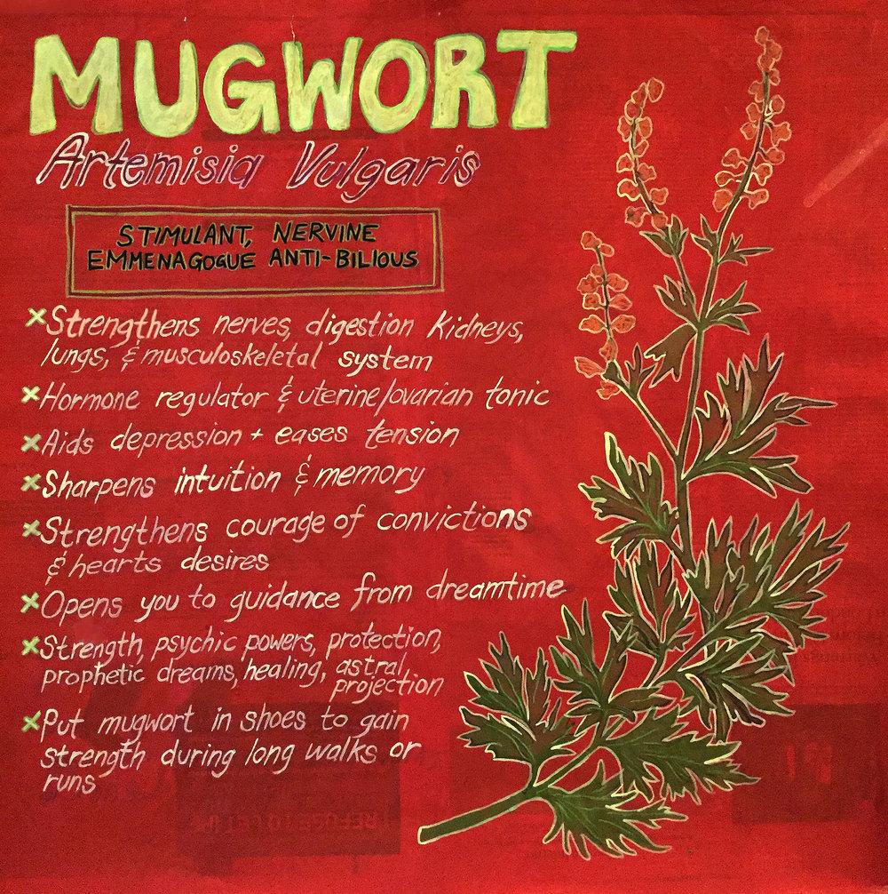 mugwort poster.jpg
