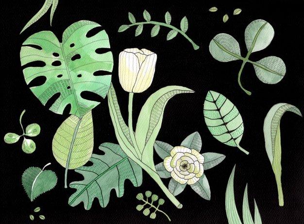 botanical_1.jpg