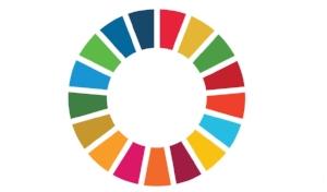 JM-SDG colour wheel.jpg