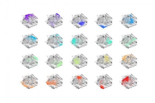 Figure 6: Top: closest shoes to the center of each cluster. Bottom: t-SNE two-dimensional projection highlighting the shoes that belong to each of the 20 clusters.