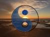 Yin Yang Yoga Logo .001.jpg