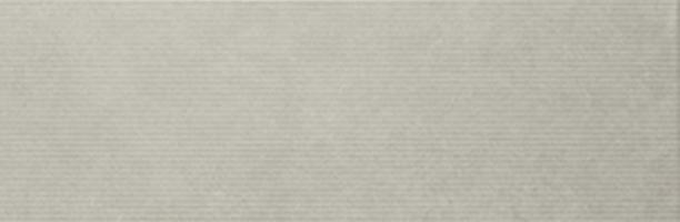 Living Grey 20 x 60 cm