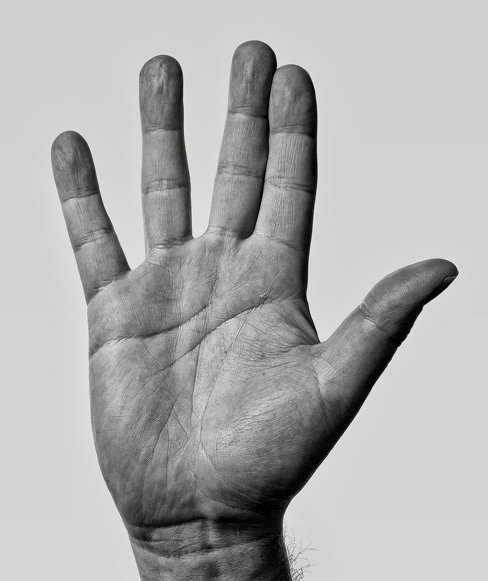 Colin Fleming Life Line Hand