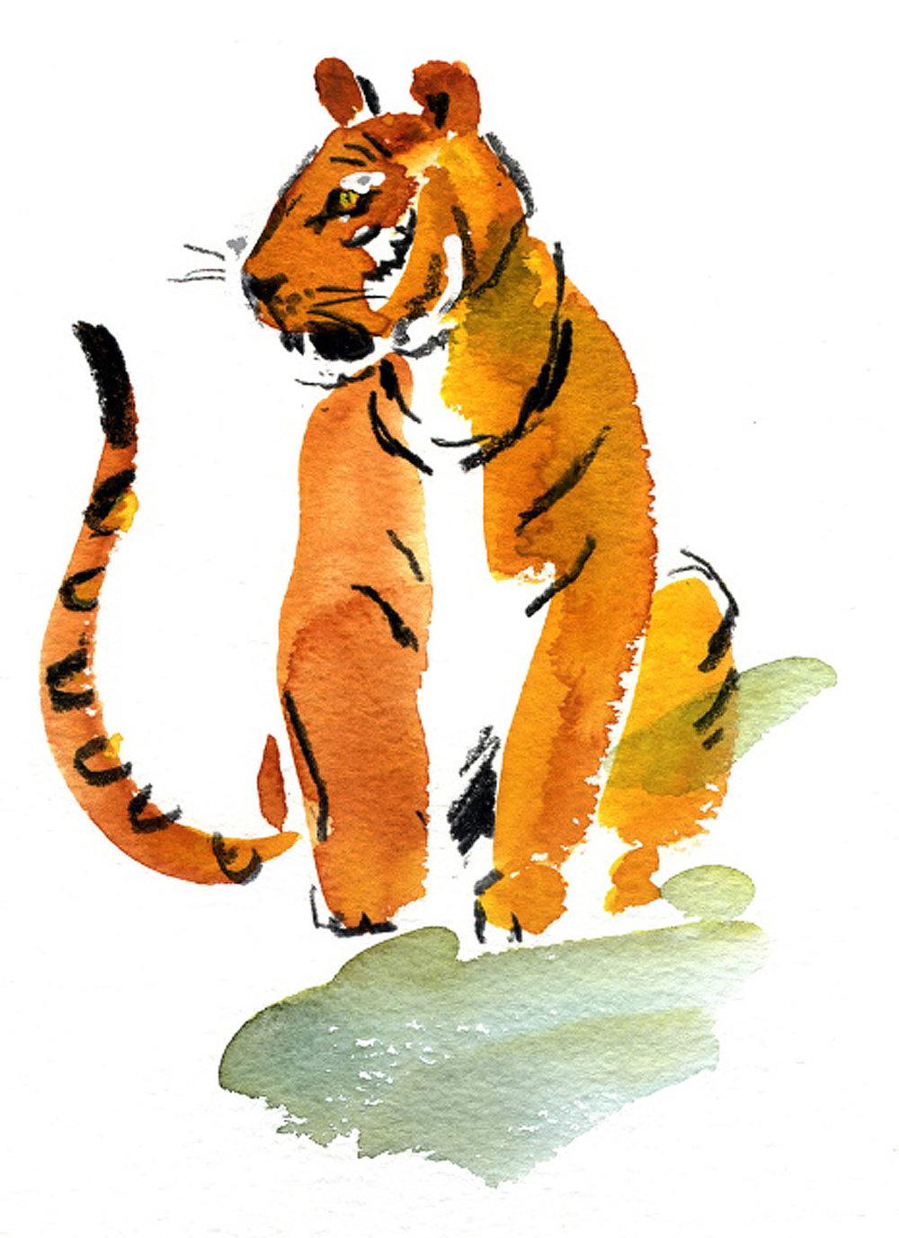 Tele.-Tiger-3_david_holmes.jpg