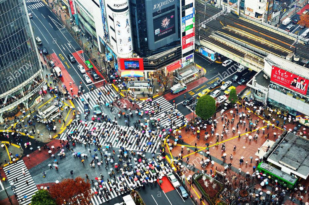 above-view-of-pedestrians-at-shibuya-crossing-in-tokyo-japan-D2DBKM.jpg