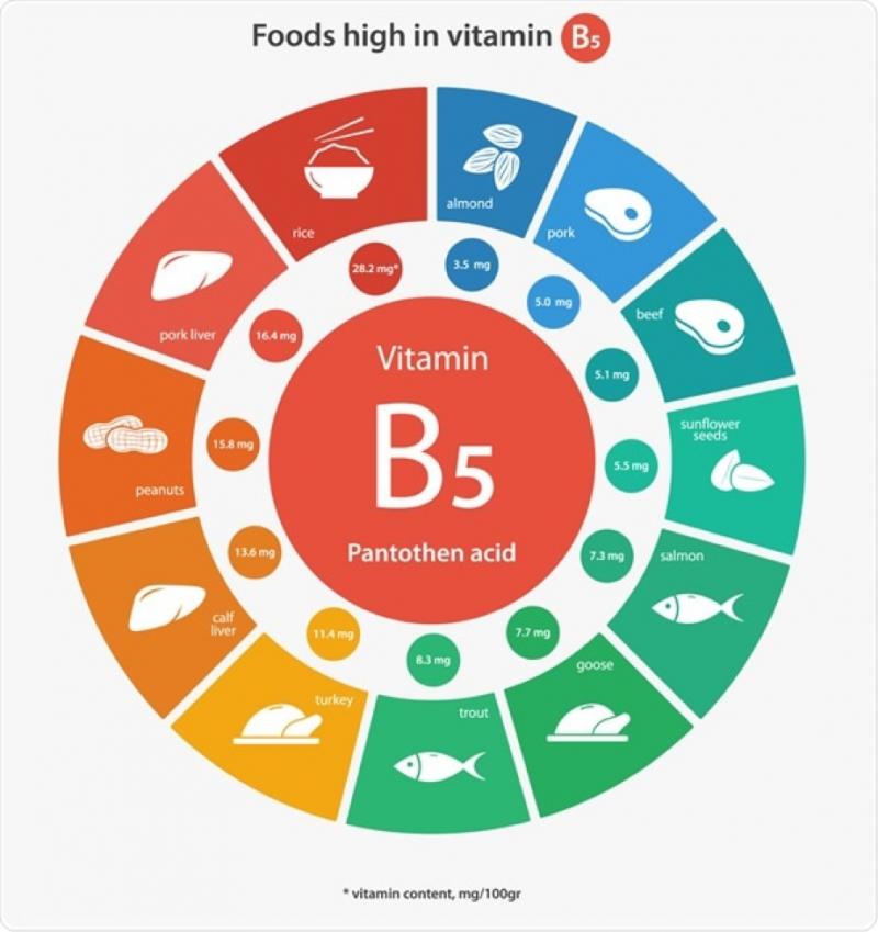 VITAMINA B5 - Acido pantotenico