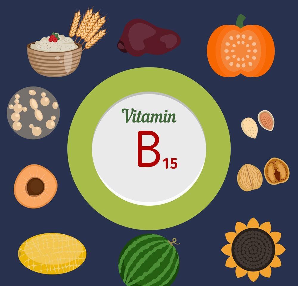 VITAMINA B15 - Acido panganico