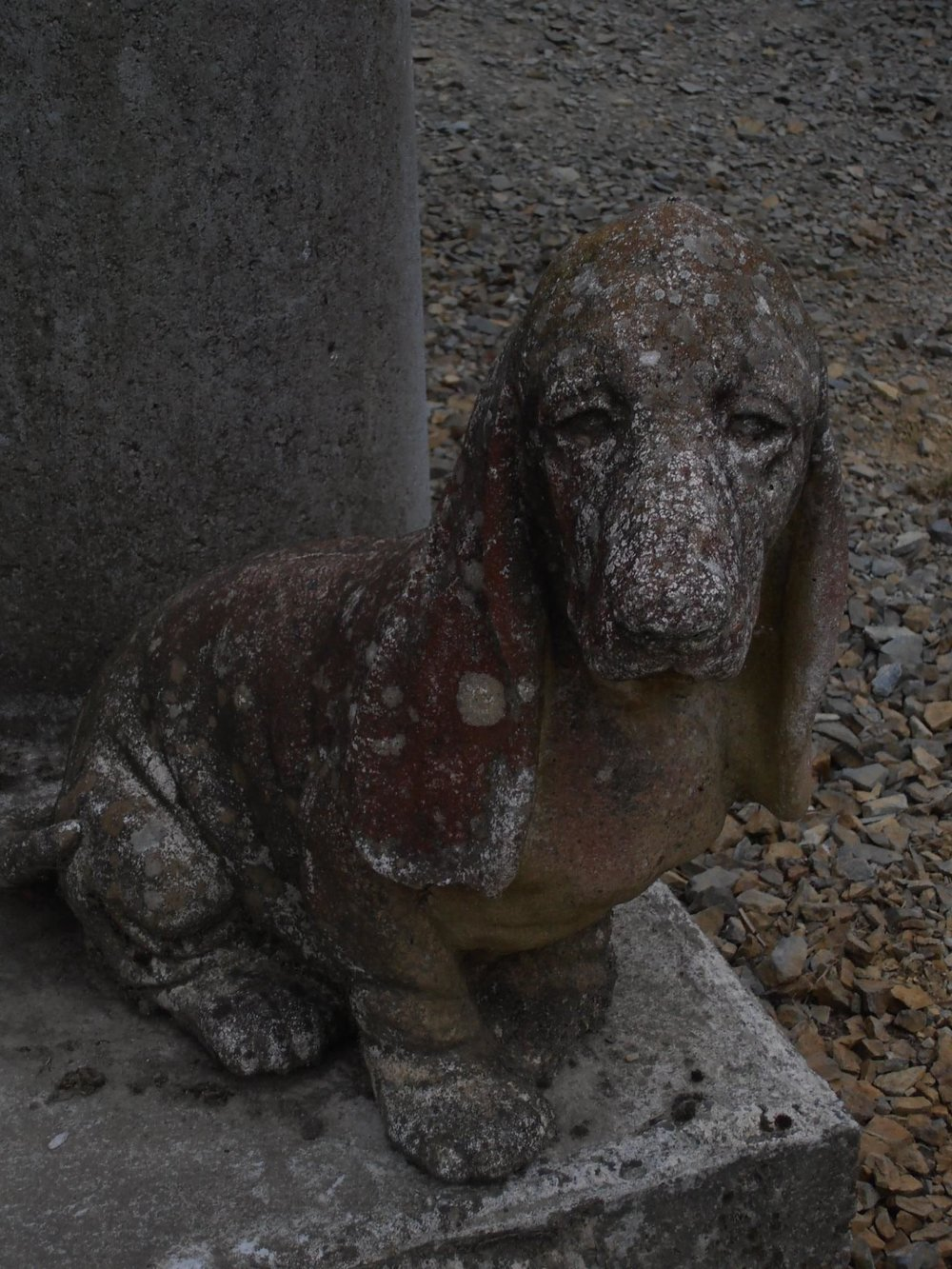 Cement Basset Hound - He guards the mill of God Saucepan Town